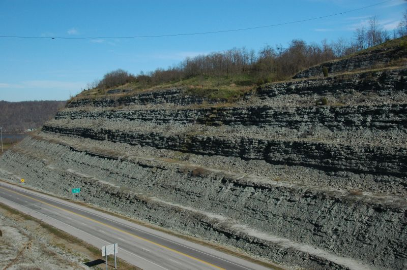 Roadcut of Kope and Fairview formations in Marysville, Kentucky